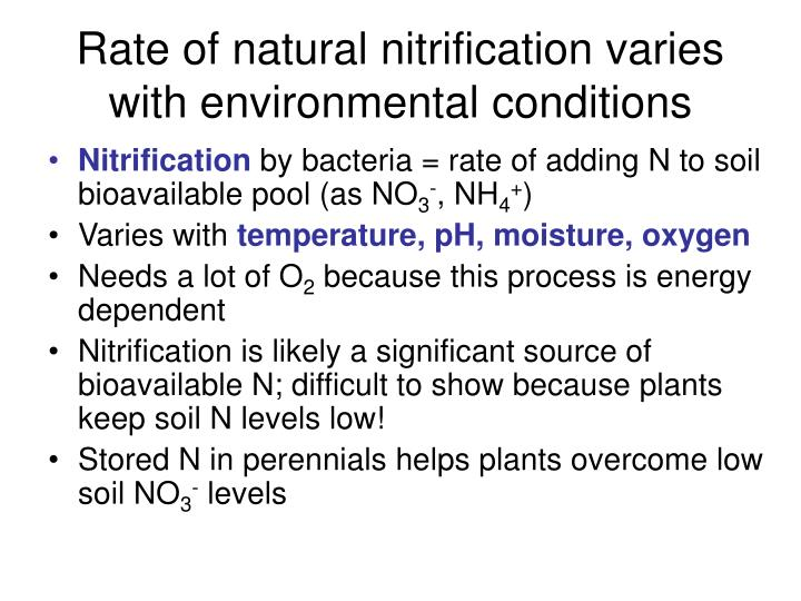 Rate of natural nitrification varies with environmental conditions