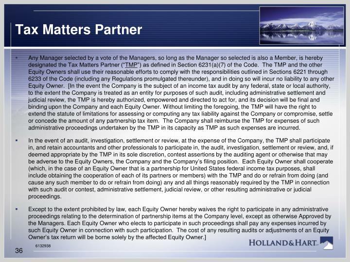 Tax Matters Partner