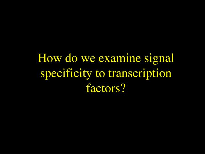 How do we examine signal specificity to transcription factors?
