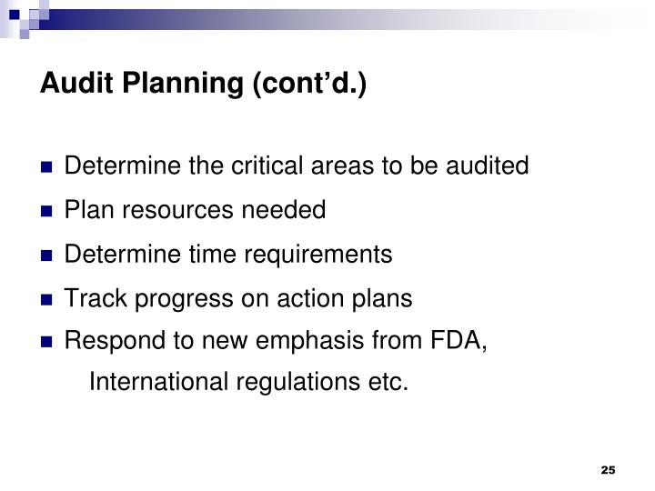 Audit Planning (cont'd.)