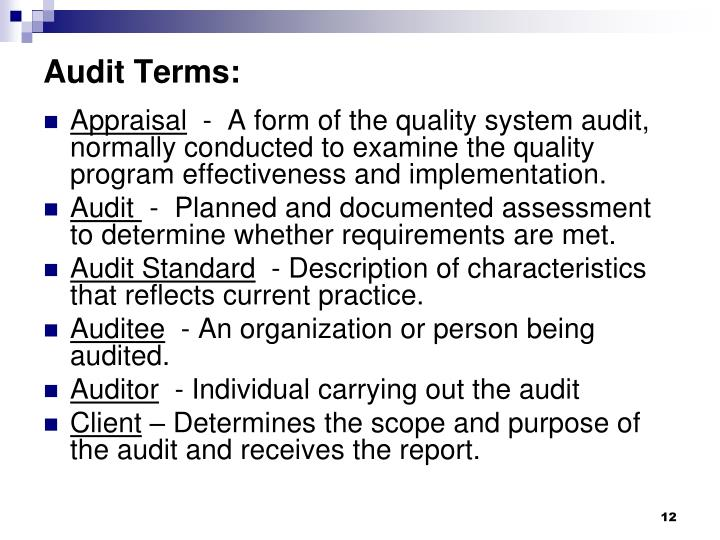 Audit Terms: