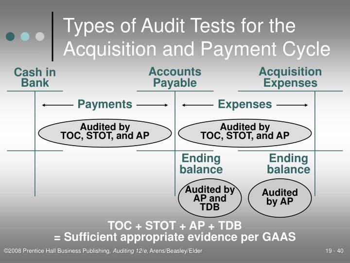 Types of Audit Tests for the