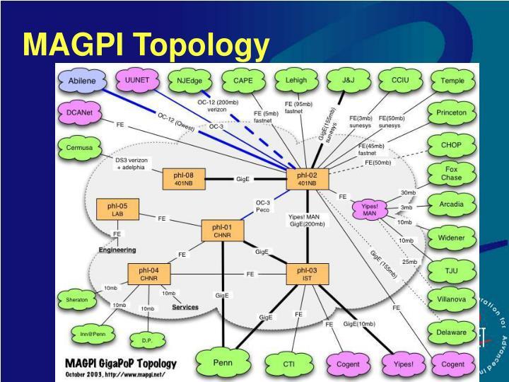 MAGPI Topology
