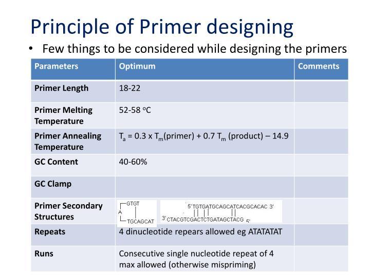 Principle of Primer designing