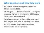 what genes are and how they work