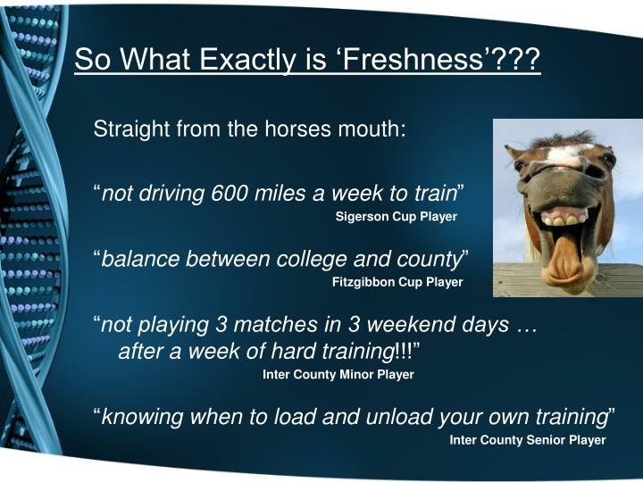 So What Exactly is 'Freshness'???