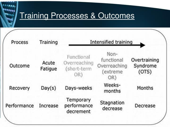 Training Processes & Outcomes
