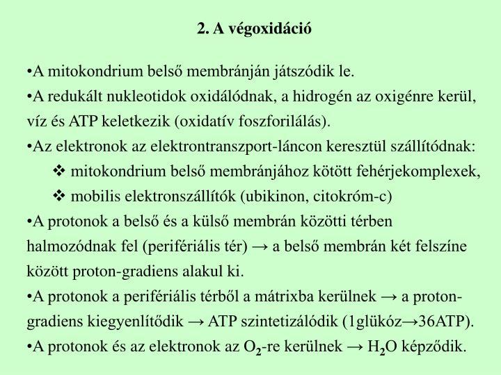 2. A végoxidáció