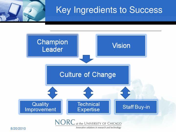 Key Ingredients to Success