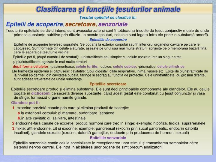 Clasificarea și funcțiile țesuturilor animale