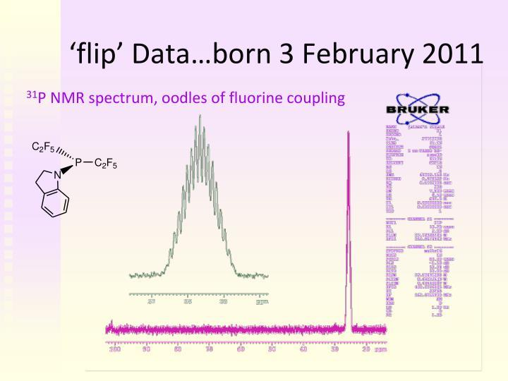 'flip' Data…born 3 February 2011