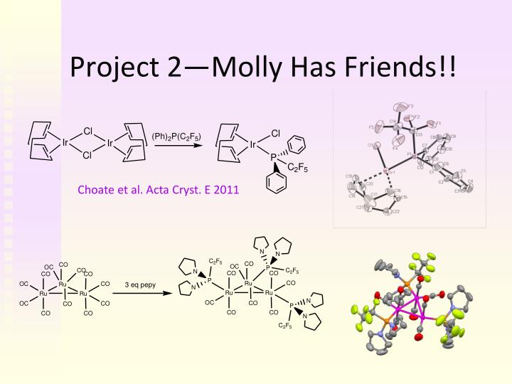 Project 2—Molly Has Friends!!