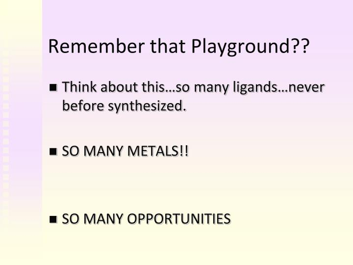 Remember that Playground??