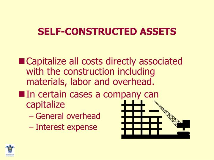 SELF-CONSTRUCTED ASSETS