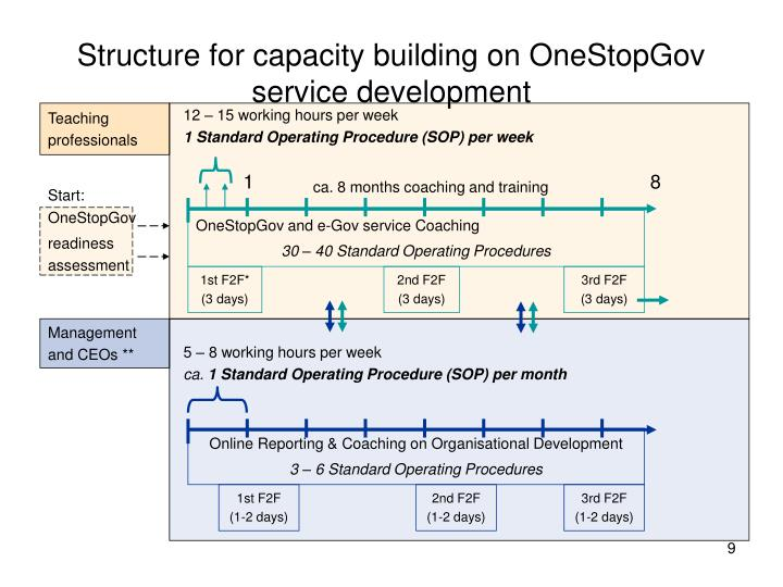 Structure for capacity building on OneStopGov service development