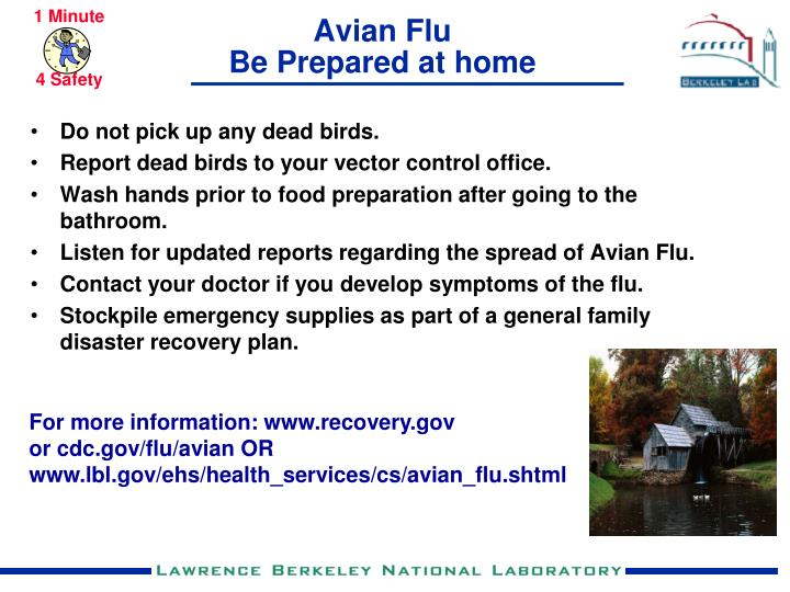 Avian flu be prepared at home
