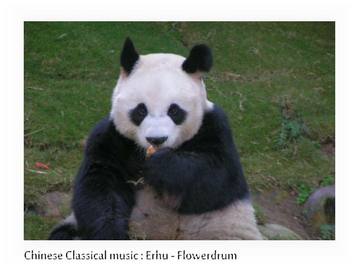 Chinese Classical music : Erhu - Flowerdrum