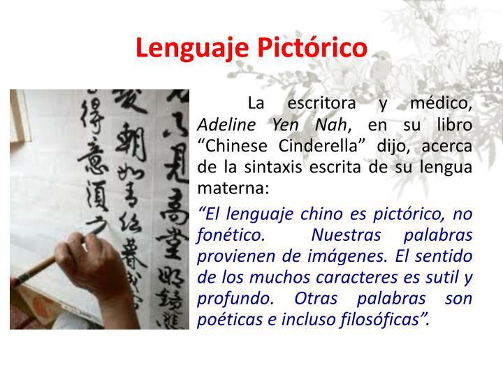 Lenguaje Pictórico