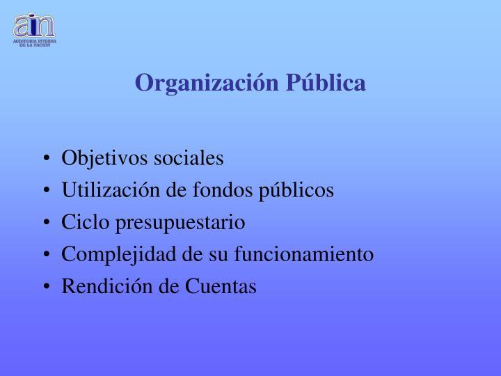 Organización Pública
