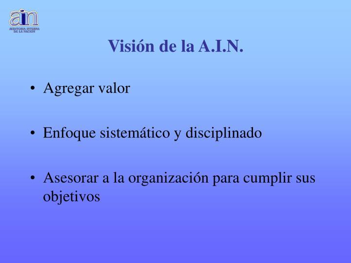 Visión de la A.I.N.