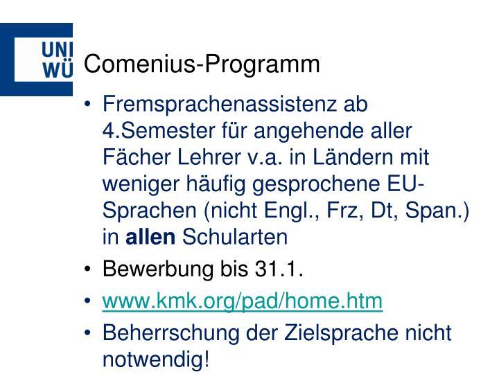 Comenius-Programm