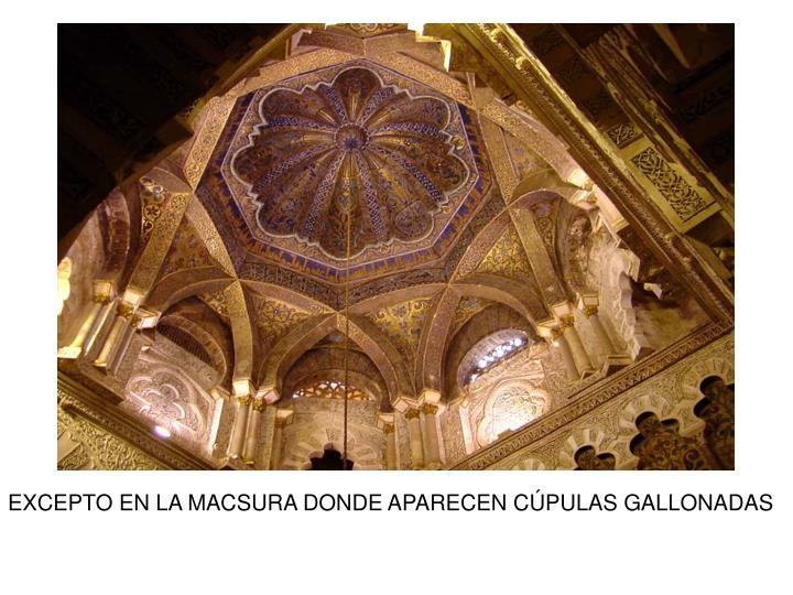 EXCEPTO EN LA MACSURA DONDE APARECEN CÚPULAS GALLONADAS