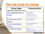 the life cycle of a group