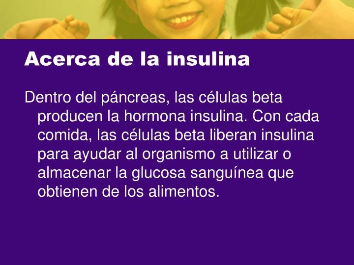 Acerca de la insulina