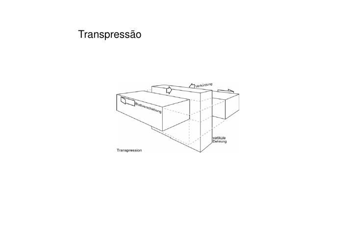 Transpressão