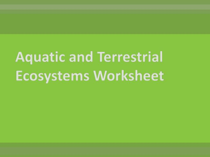 Aquatic and Terrestrial Ecosystems Worksheet