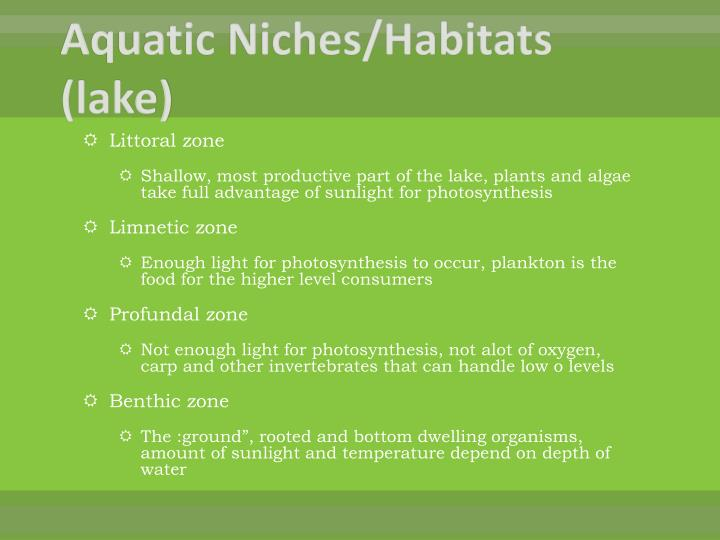 Aquatic Niches/Habitats (lake)