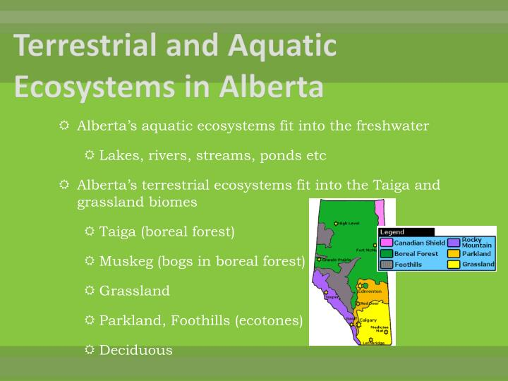 Terrestrial and Aquatic Ecosystems in Alberta