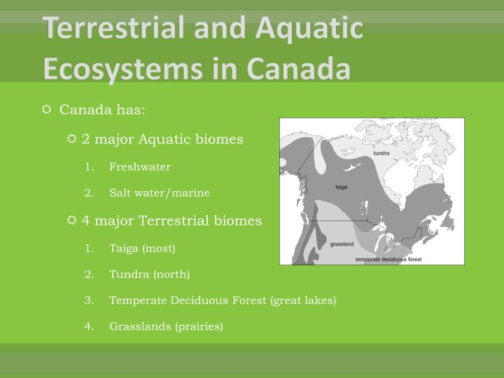 Terrestrial and Aquatic Ecosystems in Canada