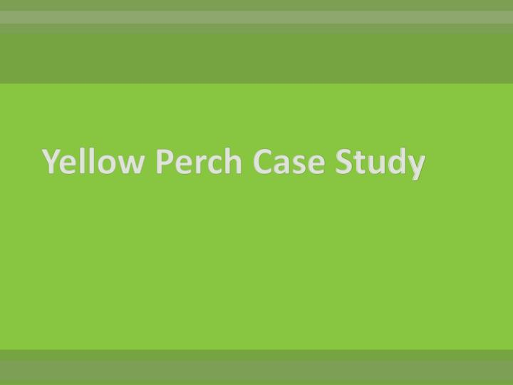 Yellow Perch Case Study