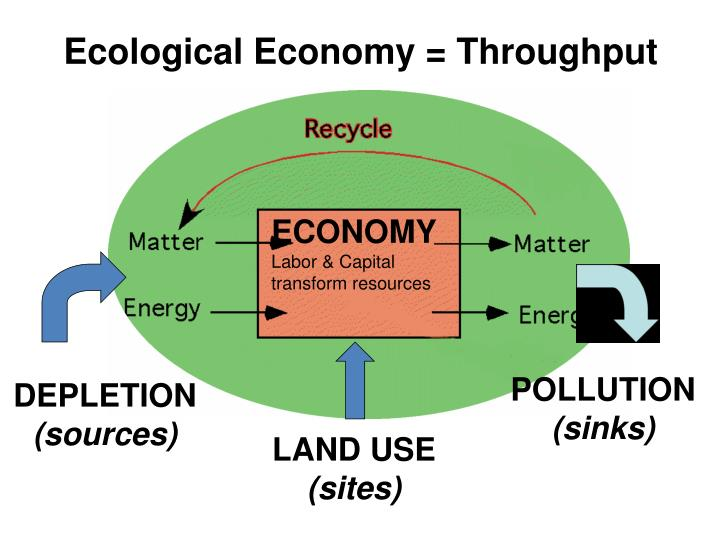 Ecological Economy = Throughput