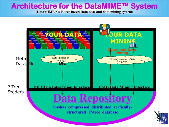 Architecture for the DataMIME™ System