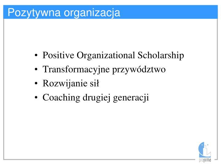 Pozytywna organizacja