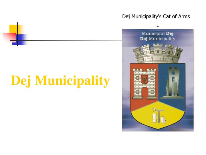 Dej Municipality's Cat of Arms