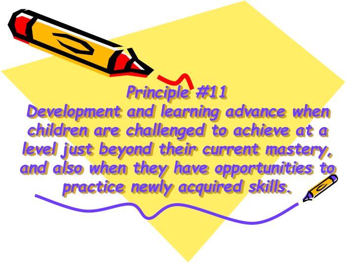 Principle #11