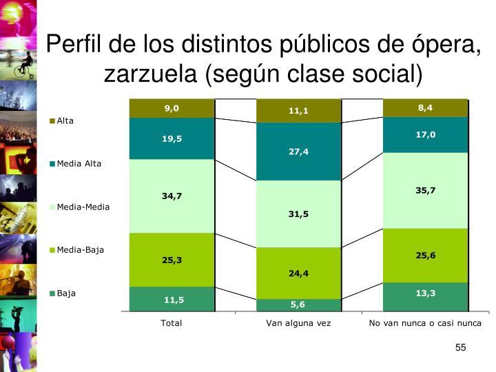 Perfil de los distintos públicos de ópera, zarzuela (según clase social)