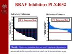 braf inhibitor plx4032