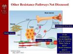 other resistance pathways not discussed