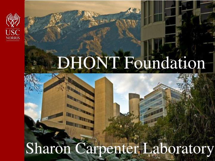 DHONT Foundation