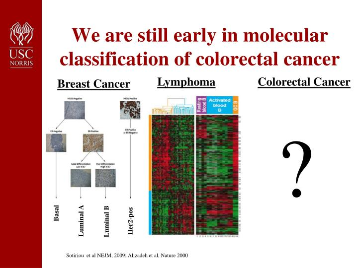 We are still early in molecular classification of colorectal cancer