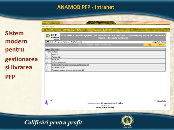ANAMOB PFP - Intranet