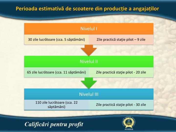 Perioada estimativă de scoatere din producție a angajaților