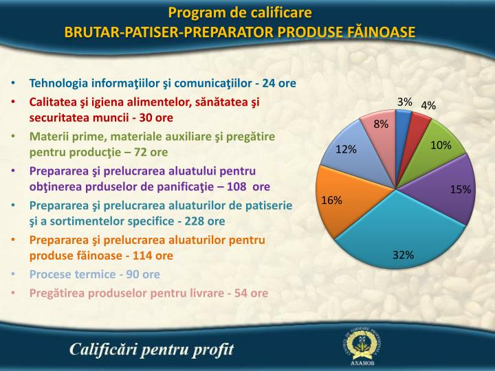Program de calificare