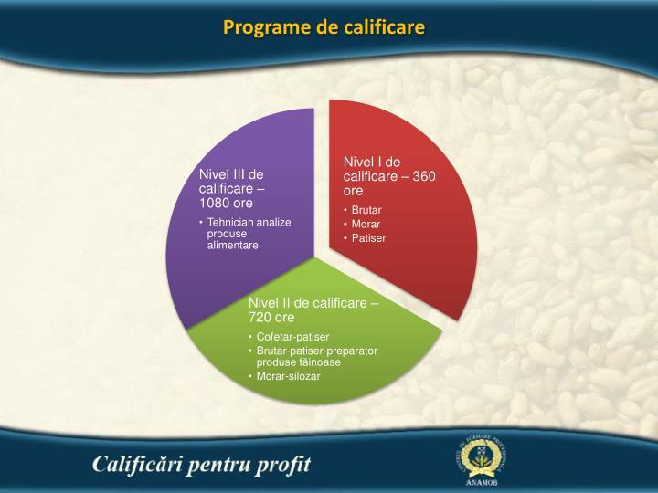 Programe de calificare