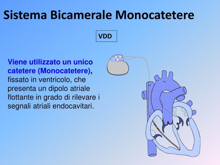 Sistema Bicamerale