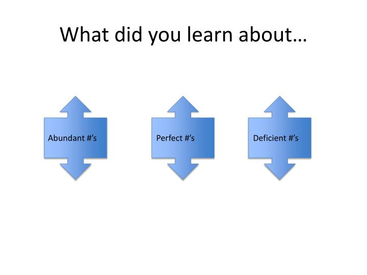 What did you learn about…